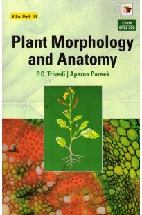 Best Price-Plant Morphology And Anatomy in English Medium by Pareek