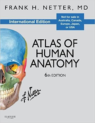 Best Price Atlas Of Human Anatomy International Edition By